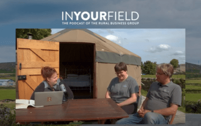 IN YOUR FIELD – The Wensleydale Experience